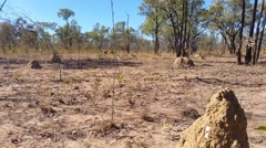 Termite Mounds Australian Outback Landscape Stock Footage