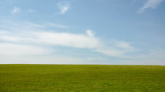 Grunge beauty blue sky and green grass Stock Footage