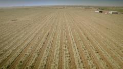 Aerial view of a cultivated field. Seville, Spain. Stock Footage