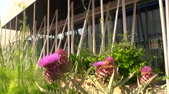 Flowers and signboard Expo Gate 2015 Stock Footage