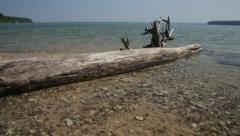 lakeshore with driftwood - stock footage