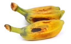 musa balbisiana – a wild banana - stock photo