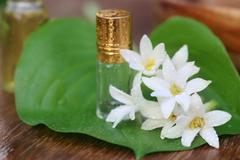 tuberose or rajnigandha of southeast asia with herbal extract - stock photo