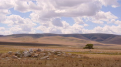 Stock video footage Scythian burial mound in the desert and lonely shaman tre Stock Footage