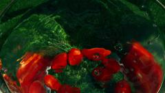 Cherry tomatoes falling into water, closeup, slow motion shot Stock Footage