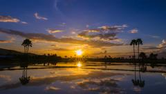 time lapse beautiful sunrise and reflection in pond - stock footage