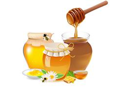 Honey Stock Illustration