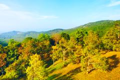 beautiful tropic landscape - stock photo