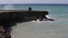 Rocky Shoreline of Dominican Republic Stock Footage