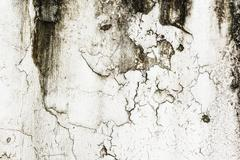 Abstract crack grunge wall background. Stock Photos