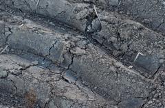 soil texture - stock photo