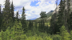 Canada Alberta Bow Valley view with distant Mount Castle s Stock Footage