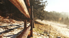 Foggy spring morning. Mist flows between firs. Tatra Mountains Stock Footage