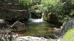 Water falls into a natural pool along the path of a Creek Stock Footage