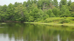 Marshland and trees, Scarborough, Maine Stock Footage