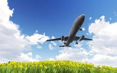 Airliner passing over flowers Stock Illustration