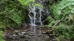 Waterfall of Bad Bertrich (Rhineland-Palatinate, Germany). Stock Footage