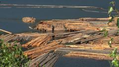 Stock Video Footage of British Columbia Adams Lake floating logs