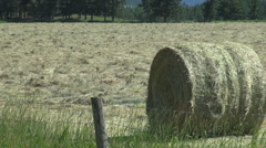 British Columbia hay bail - stock footage