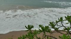 Wild beach on sri lanka coast Stock Footage
