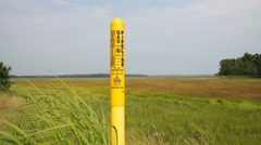 Gas pipeline in natural wetland, wide shot, Scarborough, Maine Stock Footage