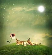 kangaroo couple relaxing on hilltop - stock illustration