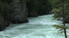 British Columbia Mount Robson Fraser River tree frame  Stock Footage