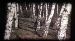 Little girl runnning, baby, birch wood, slow motion, vintage 8mm film Stock Footage
