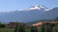 British Columbia Revelstoke logs Stock Footage