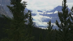 Canada Icefields Parkway Columbia Icefield framed by trees Stock Footage