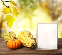 squashes and greeting card - stock photo