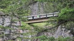 Canada Jasper National Park bridge at Malign Canyon Stock Footage