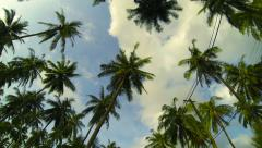 Bike ride in tropical countryside time lapse. View of tree tops and sky. Stock Footage
