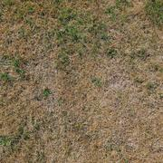 Old Grass texture - stock photo