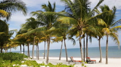Tropical beach with palm trees and lounges Stock Footage