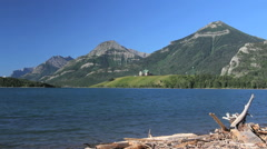 Canada Lake with driftwood in Waterton Lakes National Park Stock Footage