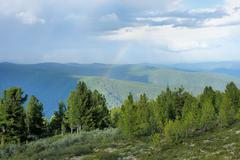 Stock Photo of Picturesque alpine cedar taiga. Sayan Mountains.