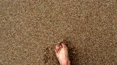 Footsteps in sand on beach Stock Footage