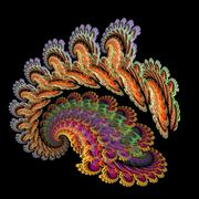 Peacock snail spiral Stock Illustration