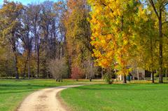 footpath and trees with autumnal foliage in italy. - stock photo