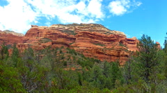 Pine Trees And Red Rock Ridge- Boynton Canyon- Sedona AZ Stock Footage