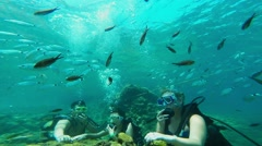 Divers on the seabed, Antalya, Turkey 1 Stock Footage