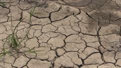 Louisiana dried mud cx Stock Footage