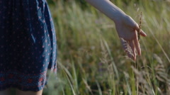 The girl touch the grass in the field passinf buy Stock Footage