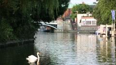Windsor riverside , England, UK, GB Europe - stock footage