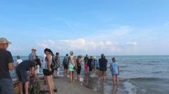 People visting Skagen beach  Stock Footage