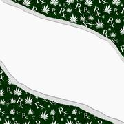 Green and white marijuana leaf and prescription symbol frame with torn backgr Stock Illustration