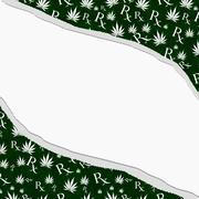 green and white marijuana leaf and prescription symbol frame with torn backgr - stock illustration