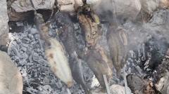 Saltwater fish on skewer Stock Footage