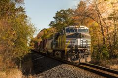 freight train in the woods - stock photo